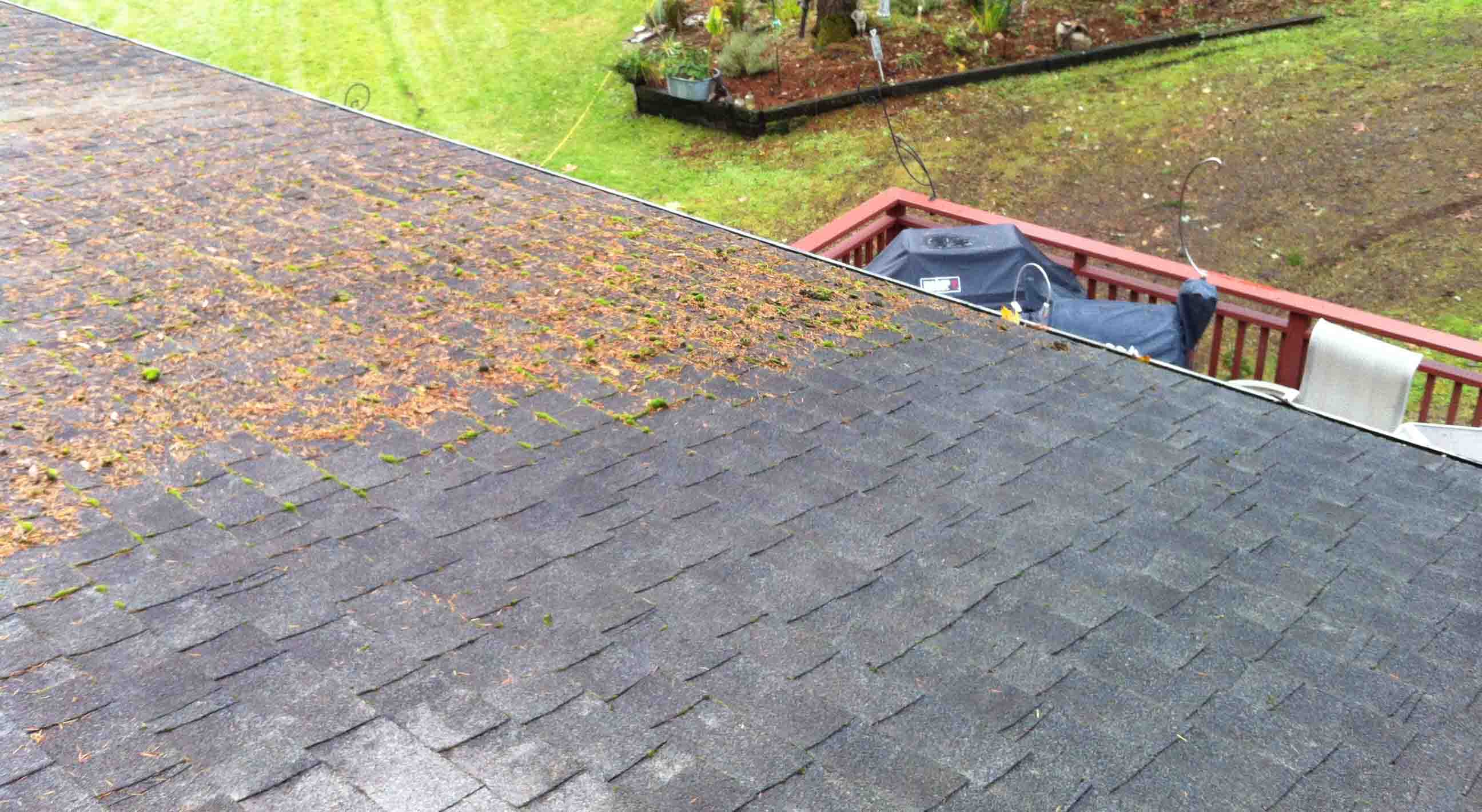Roof Moss Cleaning Duvall